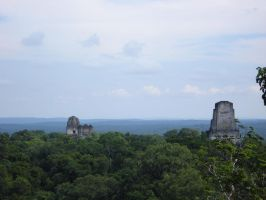 Tikal Temple IV Top view 2 by MexicanGuy