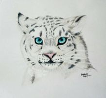 Snow Leopard by SkyKristal