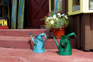 Watering Cans by peterkopher
