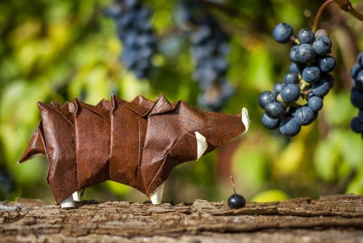 Origami Wild Boar by FoldedWilderness