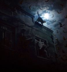 Cat on a Haunted Roof by Mr-Ripley