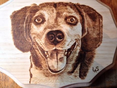 Riley the Beagle by H20dog