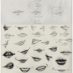 mouths study by crayon2papier