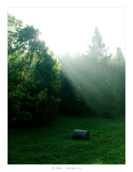 Morning Rays by 5uRt