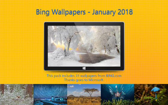 Bing Wallpapers - January 2018 by Misaki2009
