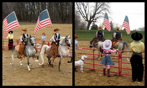 Breyer - All-American Entertainment by The-Toy-Chest