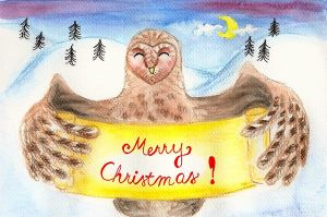 Barn Owl And Snowy Hills by LoVeras