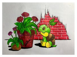 Turtwig and Flowers