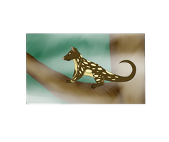 Botanica Zoo || Tiger Quoll || Samson by LadyPipen