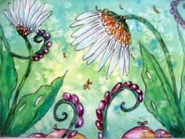 Aceo marguerite by dragonflywatercolors