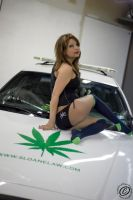 420 shoot 1 by nikkivicious