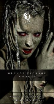 Package - Grunge - 3 by resurgere