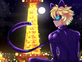 :Beautiful night isn't it, Purr-incess: by blazinghedgefox