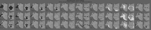 KFC's wolf facial markings chart by Chickenbusiness