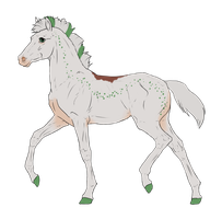 N3137 Padro Foal Design by casinuba