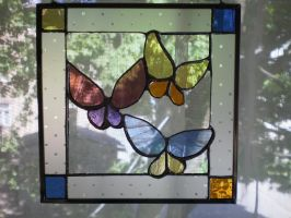 Butterflies by ioglass