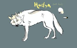 Hadyn Wolf Reference by Starquilled