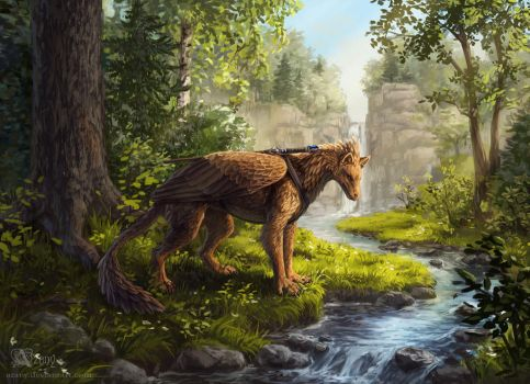 Forest stream by Azany