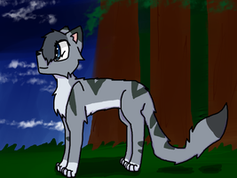 Silvercloud (redraw) by Molly179242
