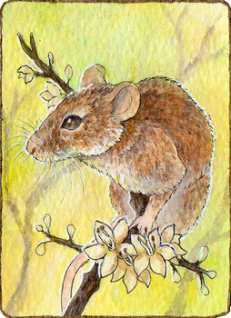Huevember Day 1: Field Mouse by The-Hare