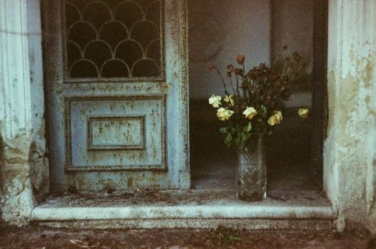 Composition with flowers by invisigoth88