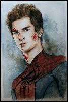 The Amazing Spider-Man by SallyGipsyPunk