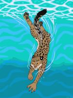 Fishing cat by Akril15