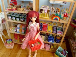 Miniature Grocery Shop by LittlestSweetShop