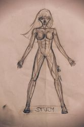 STUDY    - female body - by 0someone0