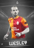 Poster | Wesley Sneijder by anasonmania