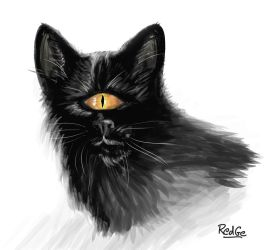 Cyclop cat -Speed Painting 1 hour by RedGeOrb