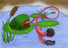 Frog and Fly by Solo-The-Loner