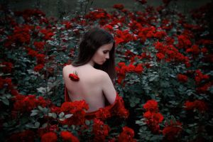She paints the roses red II by Econita