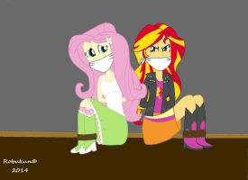 Fluttershy and Sunset Shimmer being kidnapped by Robukun