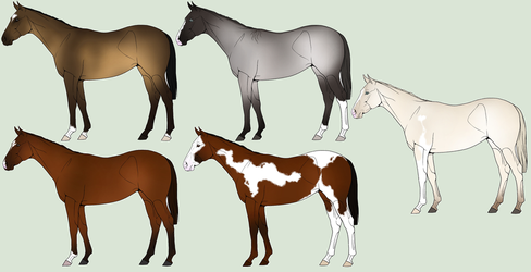 foals for Swiftly by WildForests-Stables