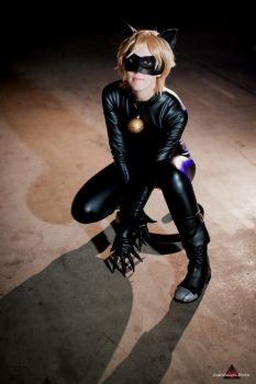 Chat Noir by fabiohazard