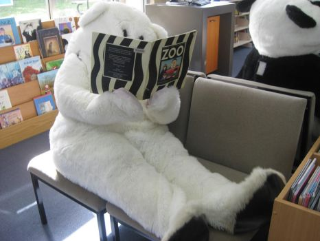 Year 12 Muck Up Day - Shhh... Reading Polar Bear! by I-Have-A-Jar-Of-Dirt