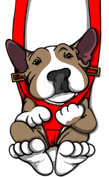 Bull Terrier Puppy Harness Graphic by sookiesooker