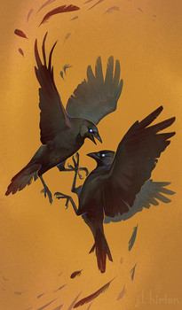 Fighting Jackdaws by witherlings