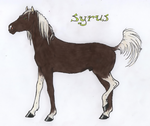 Syrus by Deathcomes4u