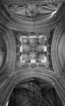 Cathedral  by loccus