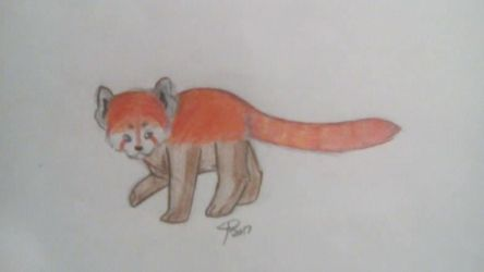 Red Panda by Wolf--Prime
