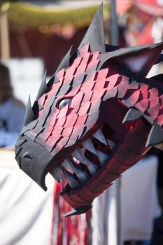Monster hunter Rathalos in real life OMG by franchii-manchii