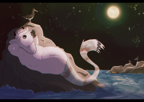 Stargazing by Blackwolfpaw