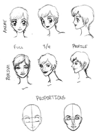 face tutorial and reference by karynironsides