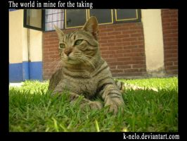 the world is mine for the..... by k-nelo