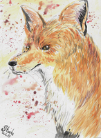 Fox painting by SulaimanDoodle