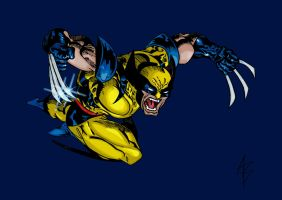 Classic Wolverine by andreabocci