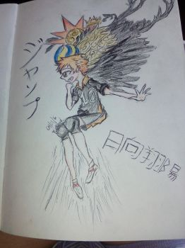 fly high Hinata by 169prismanime169