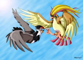 Pidgeot vs Staraptor